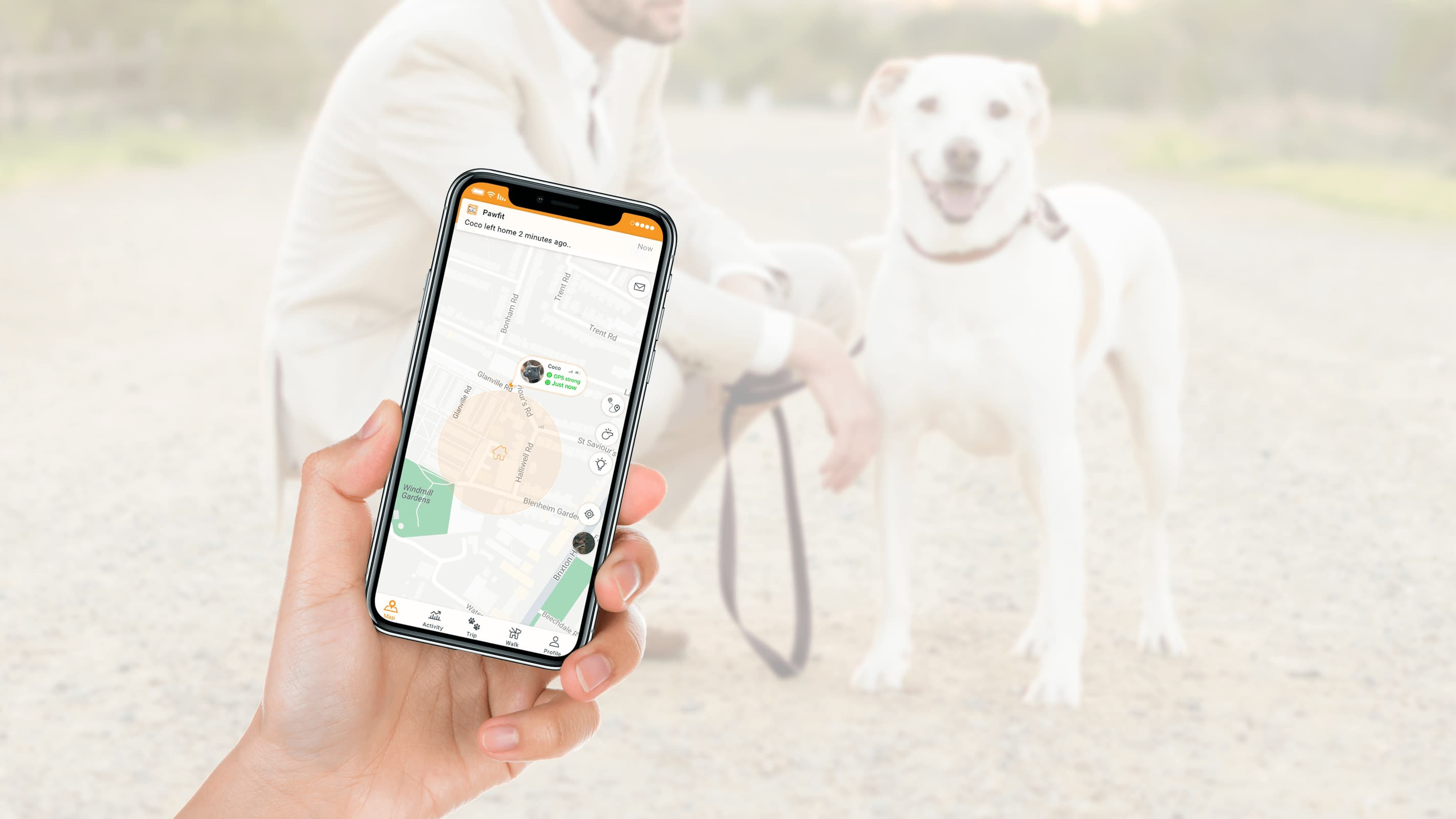 Pawfit App can be downloaded from App Store or Google Play