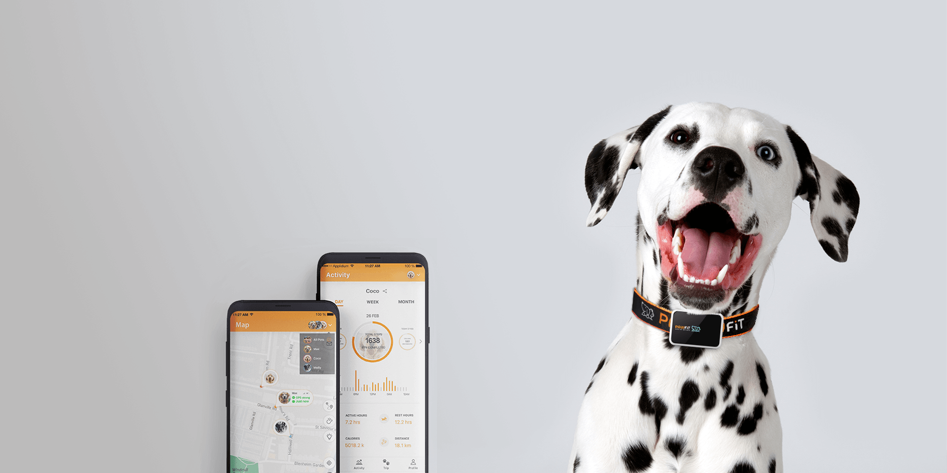 Pawfit gps & fitness dog collar, Pawfit APP with fast tracking and activity statistics features